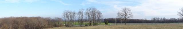 cropped-cropped-04-field.jpg