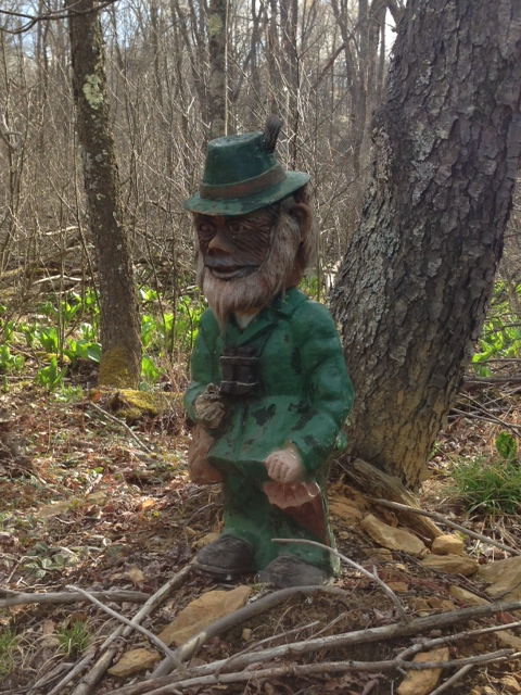 Moeras the Leprechaun