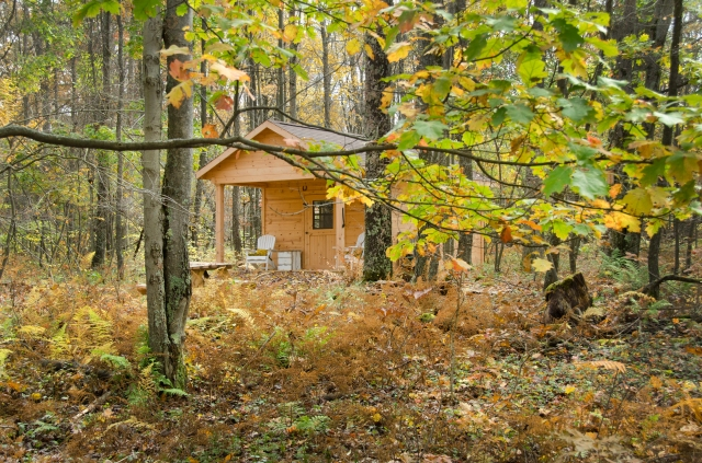 Cozy huts, tucked privately into the woods.