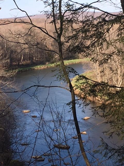 River - High Bluff